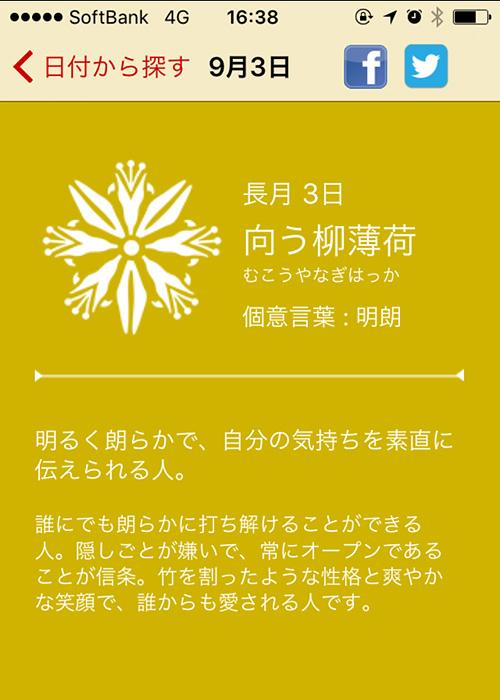 9/3の花個紋(iPhoneアプリ)