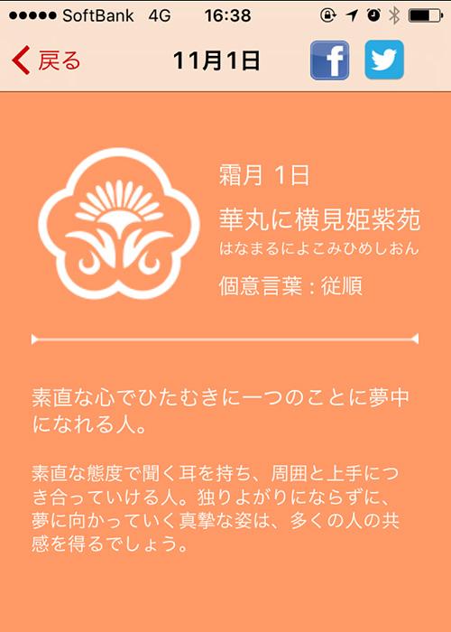 11/1の花個紋(iPhoneアプリ)